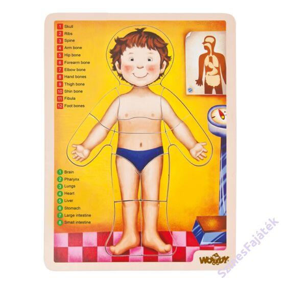 emberi test kirakó fejlesztő játék