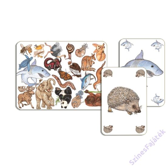 Djeco Zanimatch - kártyajáték gyerekeknek