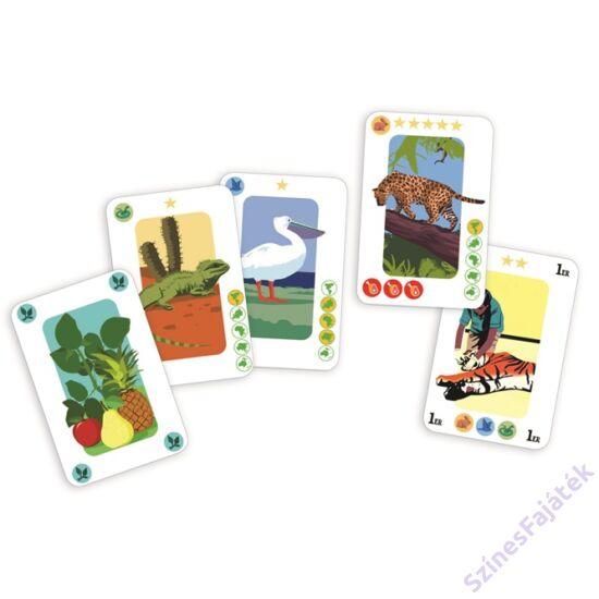 Djeco AnimaZoo - kártyajáték gyerekeknek